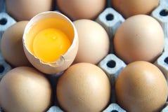 Egg Yolk. The egg yolk in shell Royalty Free Stock Photos