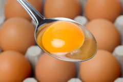 Egg yolk in spoon Stock Photo