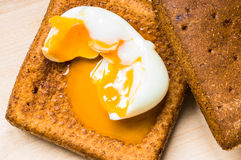 Egg yolk spread on bread Stock Image