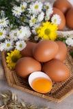 Egg yolk still life basket sliced daisy flowers, flowers Royalty Free Stock Images