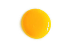 Egg Yolk on White Background Stock Image