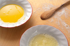 Egg Yolk and White in plates Stock Image