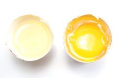 Egg yolk and white separate or divide concept Stock Image
