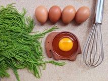Egg yolk on wooden elephant shaped saucer Stock Images