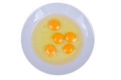 Egg Yolks Stock Photos