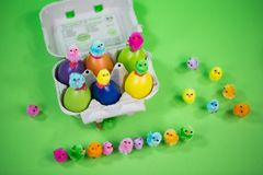 Eggbox with eggs and funny chicks, green background. Postcard Stock Photography