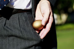 Eggcellent Royalty Free Stock Photography