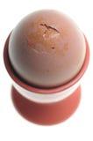 eggcup яичка Стоковое Изображение