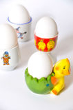 Eggcups. White egg on chick eggcups on white background Royalty Free Stock Image