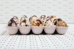 Egges i ask ombord royaltyfri bild