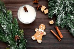 Eggnog, gingerbread cookie with cinnamon and spruce for new year 2018 celebraton winter set. Wooden background top view Stock Photo