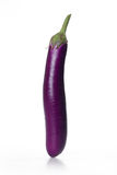 Eggplant. Isolated on a white background Royalty Free Stock Photos
