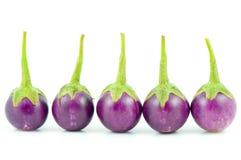 Eggplant. Purple eggplant on white background Stock Photos