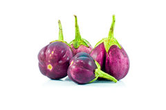 Eggplant. Stock Photos