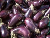 Free Eggplant Stock Image - 36694641