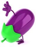 Eggplant Royalty Free Stock Photos