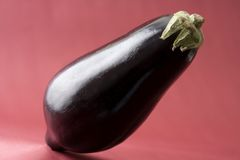 Eggplant. Black eggplant in red background royalty free stock photos