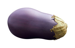 Eggplant. On a white background royalty free stock image