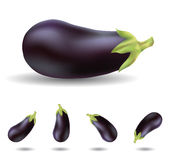 Eggplant. Isolated on white close up and in different angles Royalty Free Stock Photos