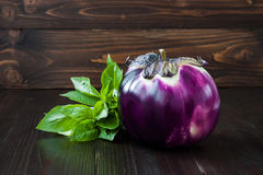 Eggplant (aubergine) and basil on dark wooden table. Fresh raw farm vegetables - harvest from the garden in rustic kitch. En. Rural still life Stock Photography