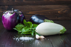 Eggplant (aubergine) with basil and garlic on dark wooden table. Fresh raw farm vegetables - harvest from the garden in. Purple and white eggplant (aubergine) Stock Photo