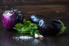 Eggplant (aubergine) with basil and garlic on dark wooden table. Fresh raw farm vegetables - harvest from the garden in. Rustic kitchen. Rural still life Stock Images