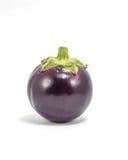 Eggplant Aubergine round purpl Stock Photos