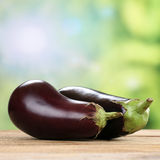 Eggplant or aubergine vegetables in summer Royalty Free Stock Photo