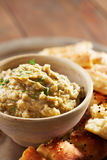 Eggplant baba ganoush with flat bread Royalty Free Stock Photos