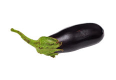 Eggplant. Blue eggplant on a white background Royalty Free Stock Images