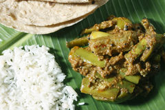 Eggplant/brinjal Podi Curry from India Stock Image