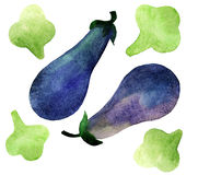 Eggplant and broccoli Royalty Free Stock Photos