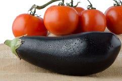 Eggplant and cherry tomatoes vine Stock Photography