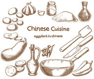 Eggplant in chinese, ingredients of the food Stock Photos