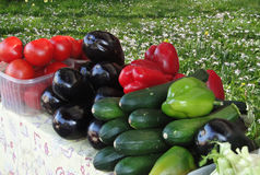 Eggplant, cucumber peppers and tomatoes Stock Photography