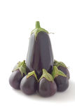 Eggplant, egg-plant, aubergine. Group of eggplants, (egg-plants, aubergines), on white background Stock Photography