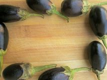 Eggplant frame Royalty Free Stock Photography