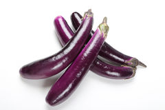 Eggplant. Fresh chinese eggplant on white background stock images