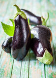 Eggplant Stock Photography