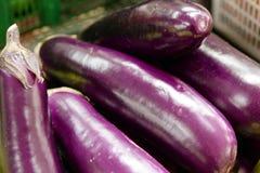 Eggplant fruit Stock Photos