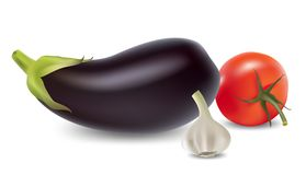 Eggplant, garlic and tomato set. Royalty Free Stock Photo