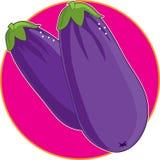 Eggplant Graphic Stock Images