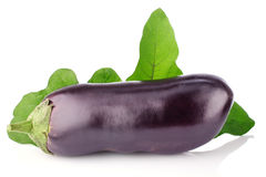 Eggplant with green leaf Royalty Free Stock Images
