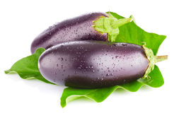 Eggplant with green leaf Stock Photography