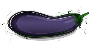 Eggplant Illustration Stock Photo