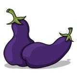 Eggplant illustration Royalty Free Stock Image