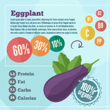 Eggplant infographics and vitamins in a flat style. Vector illustration. EPS 10 Royalty Free Stock Photos