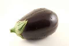 Eggplant-isolated on Stock Images