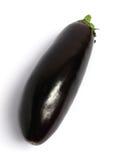 Eggplant isolated Stock Image