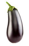 Eggplant. Isolated on white background. Clipping Path stock images